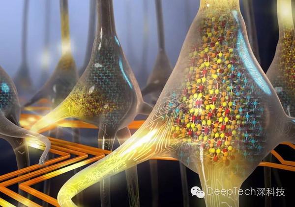 IBM 首个人工神经元